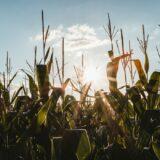 certification hve exploitation agricole