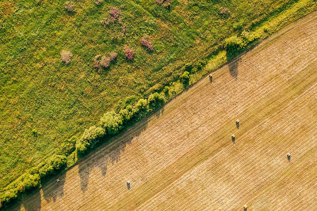 https://www.medinbio.com/wp-content/uploads/2021/07/Agriculture-reduire-son-empreinte-environnementale.jpg