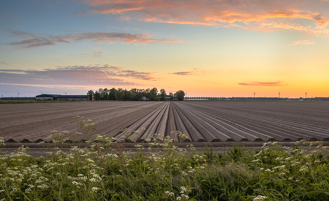 https://www.medinbio.com/wp-content/uploads/2021/07/Certification-agriculture-raisonnee-1050x640.jpg