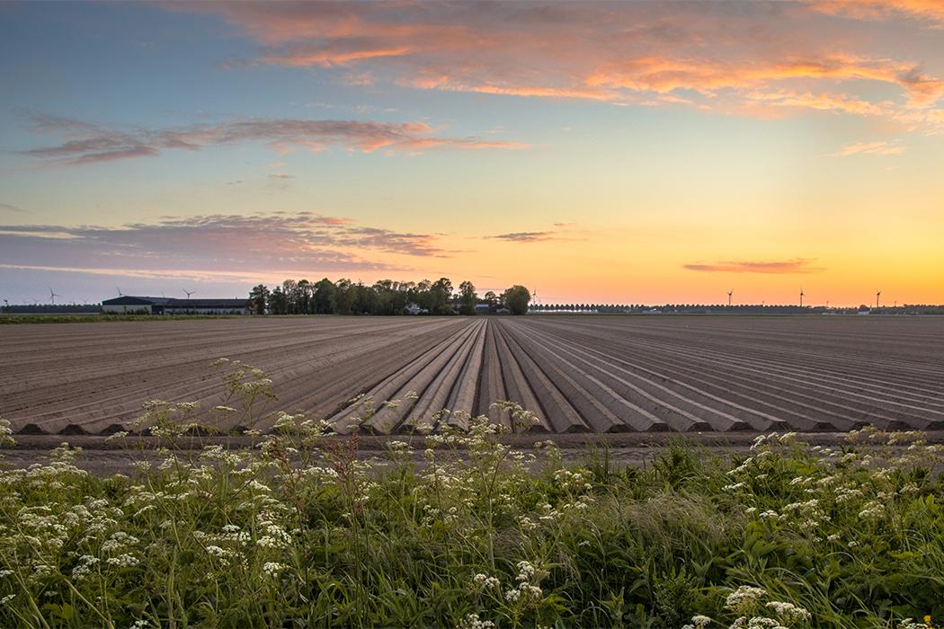https://www.medinbio.com/wp-content/uploads/2021/07/Certification-agriculture-raisonnee.jpg